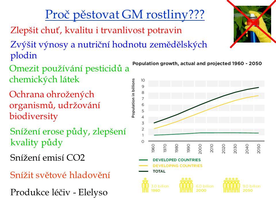 Proč pěstovat GM rostliny