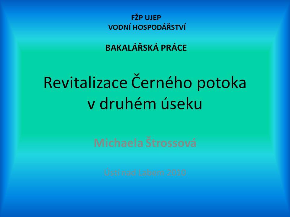 Revitalizace Černého potoka v druhém úseku