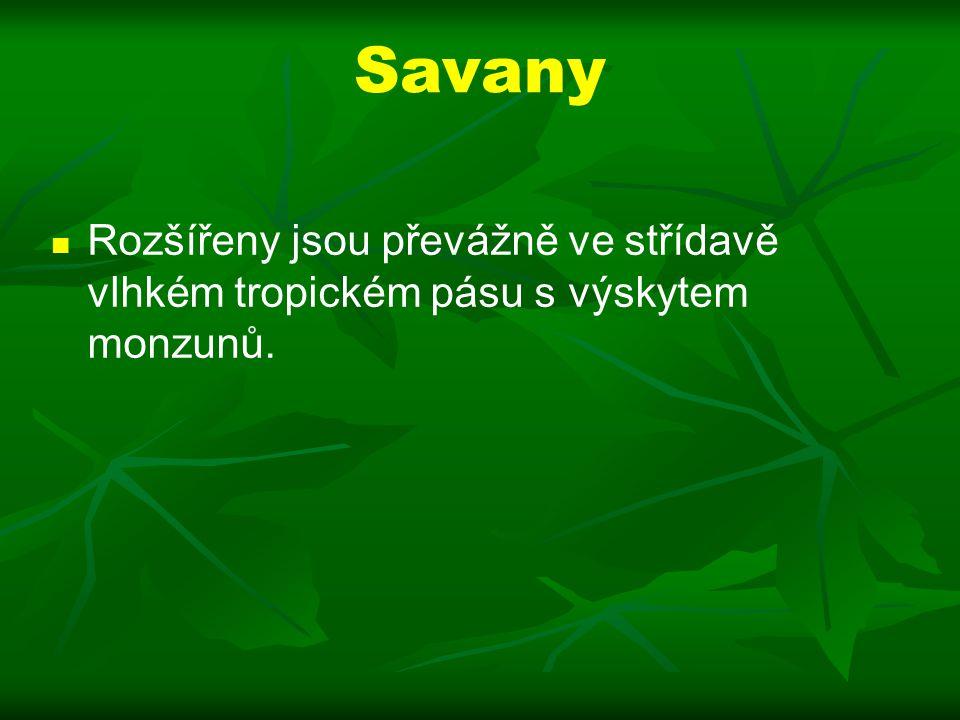 Savany Rozšířeny jsou převážně ve střídavě vlhkém tropickém pásu s výskytem monzunů.