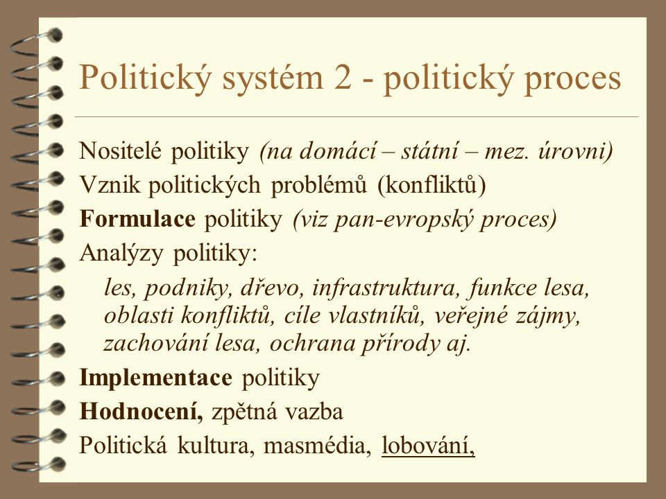 Politický systém 2 - politický proces