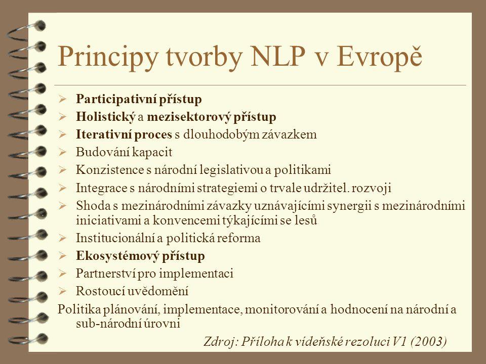 Principy tvorby NLP v Evropě