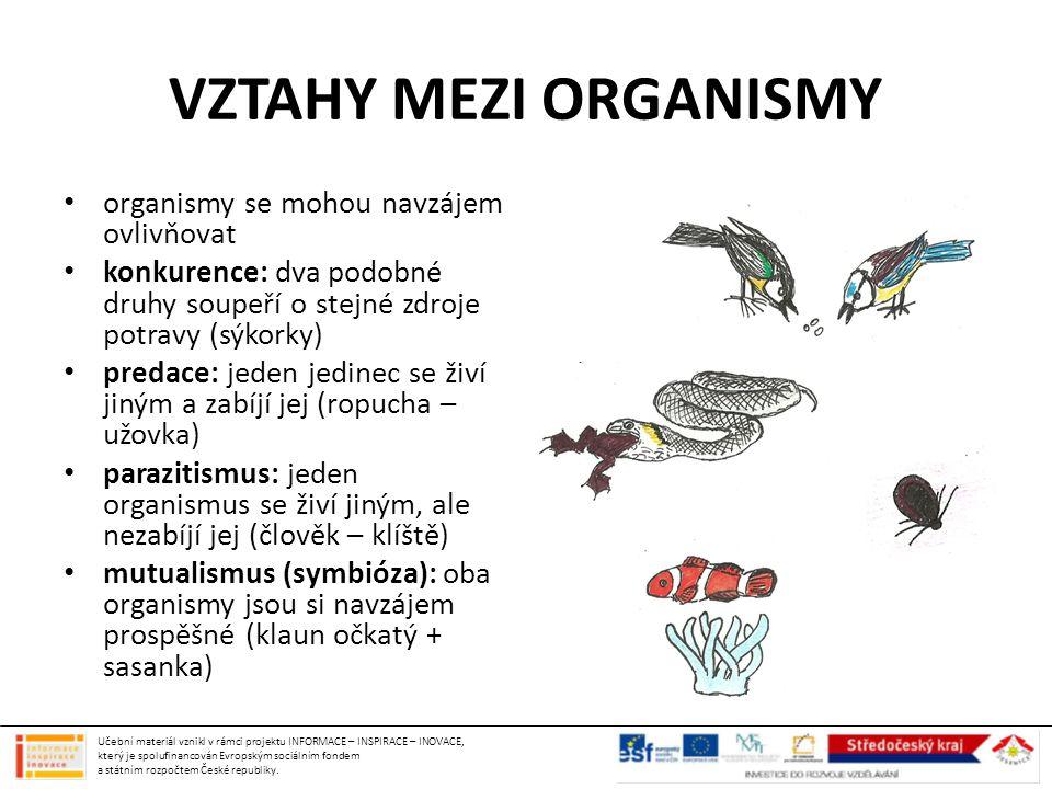 VZTAHY MEZI ORGANISMY organismy se mohou navzájem ovlivňovat