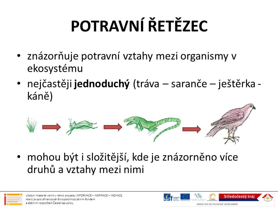 POTRAVNÍ ŘETĚZEC znázorňuje potravní vztahy mezi organismy v ekosystému. nejčastěji jednoduchý (tráva – saranče – ještěrka - káně)