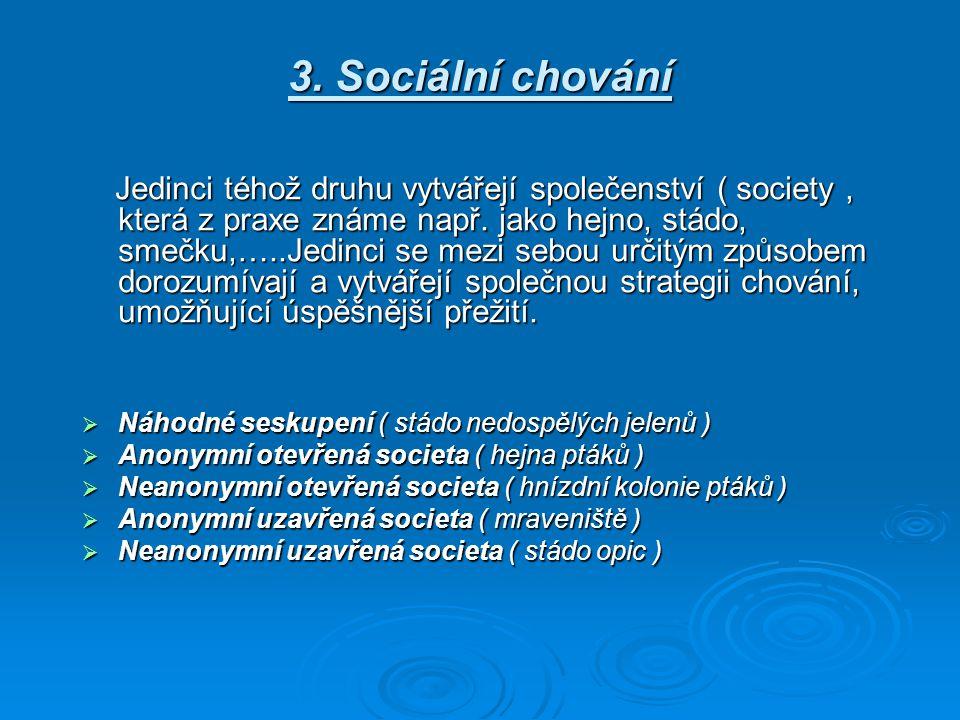 3. Sociální chování Náhodné seskupení ( stádo nedospělých jelenů )