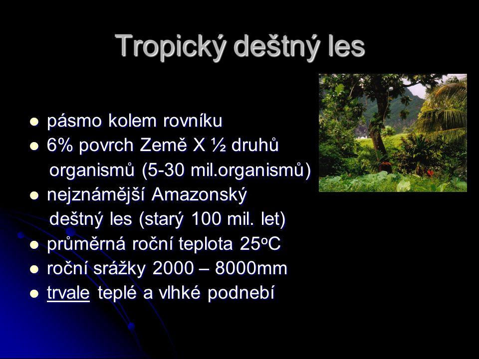 Tropický deštný les pásmo kolem rovníku 6% povrch Země X ½ druhů