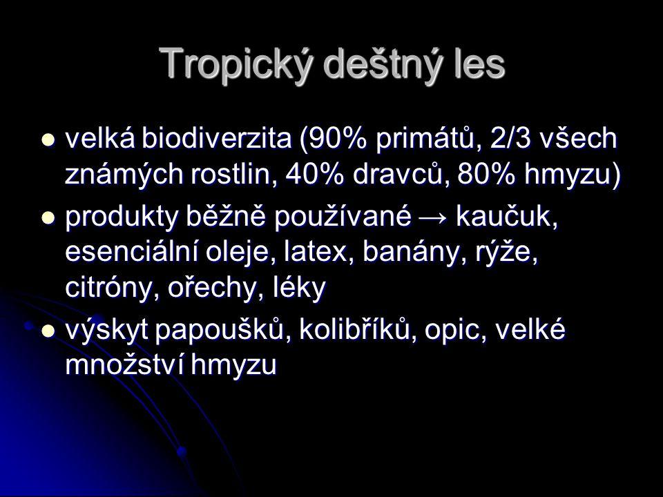 Tropický deštný les velká biodiverzita (90% primátů, 2/3 všech známých rostlin, 40% dravců, 80% hmyzu)