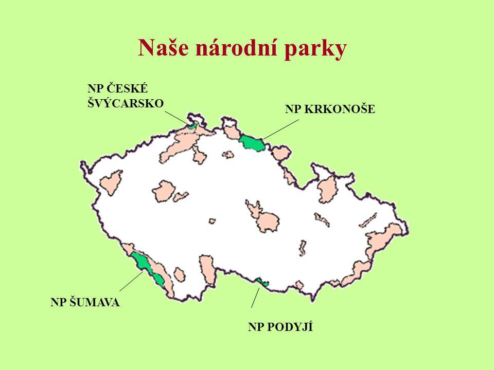Naše národní parky NP ČESKÉ ŠVÝCARSKO NP KRKONOŠE NP ŠUMAVA NP PODYJÍ
