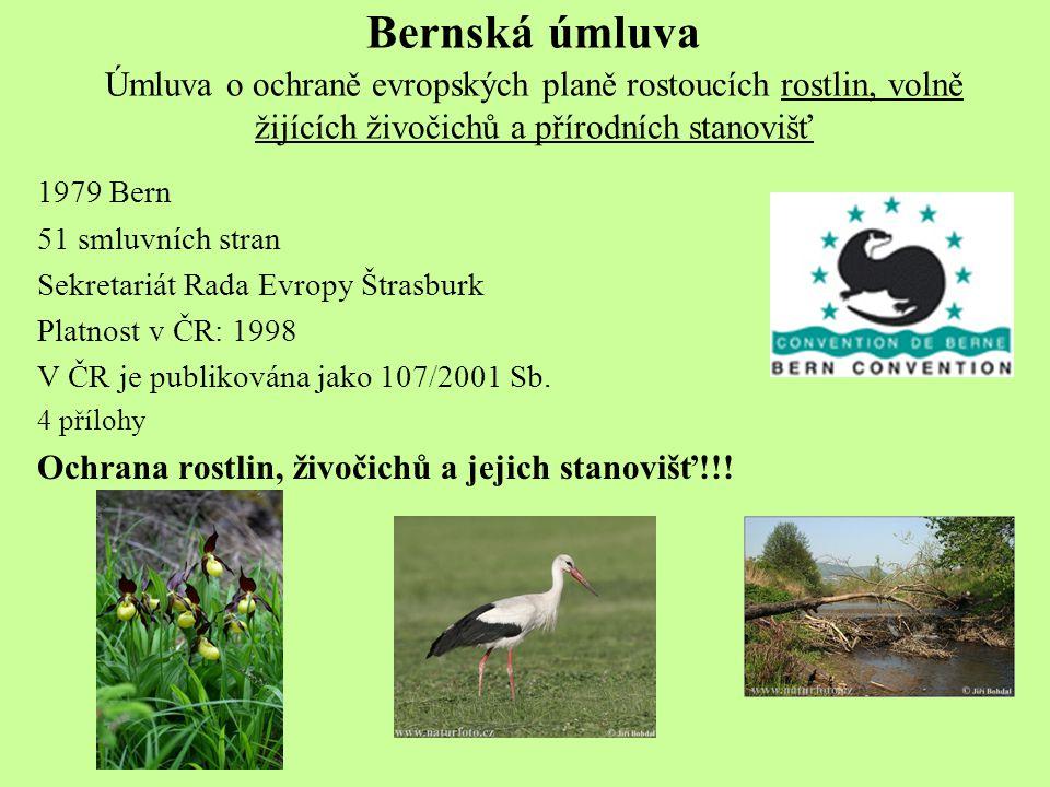 Bernská úmluva Úmluva o ochraně evropských planě rostoucích rostlin, volně žijících živočichů a přírodních stanovišť
