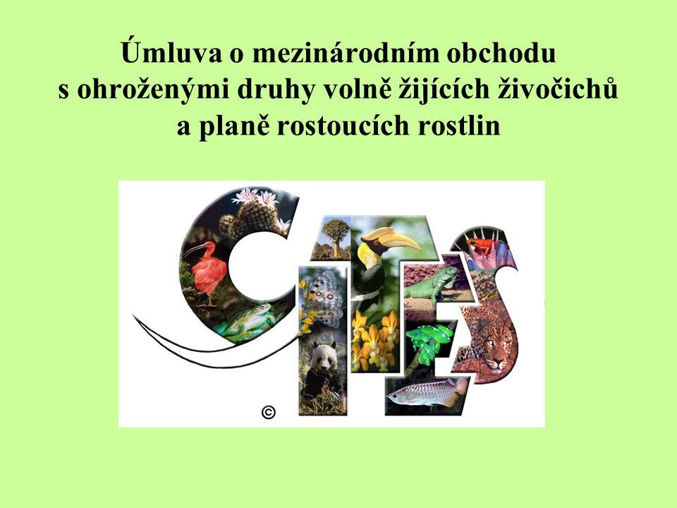Úmluva o mezinárodním obchodu s ohroženými druhy volně žijících živočichů a planě rostoucích rostlin