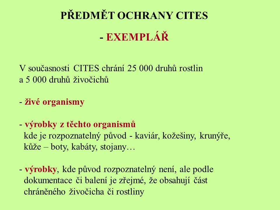 PŘEDMĚT OCHRANY CITES - EXEMPLÁŘ