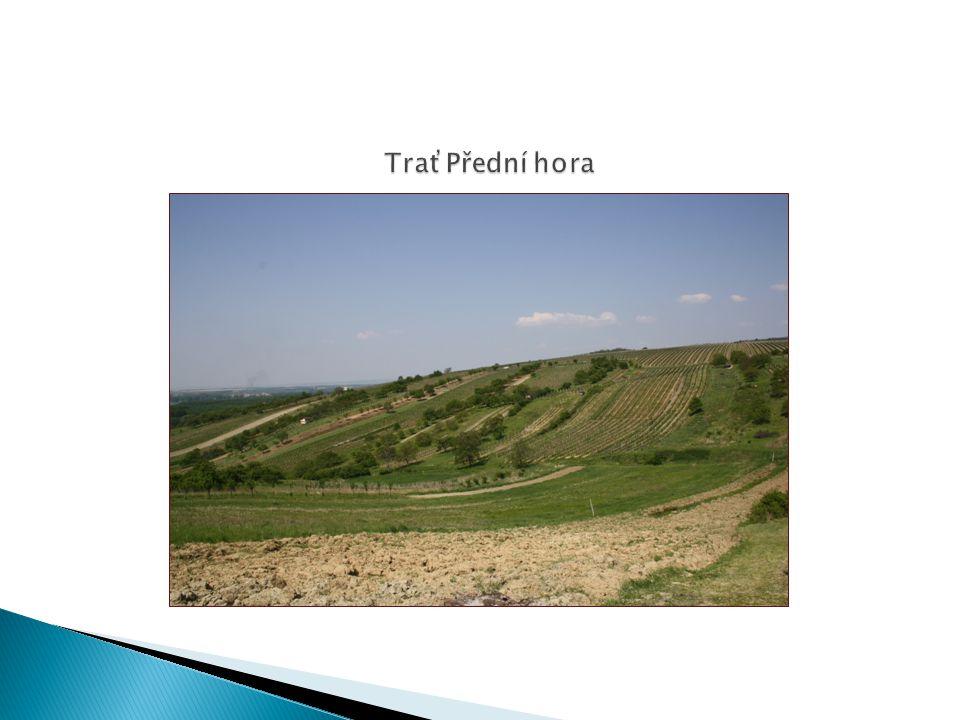 TraťPřední hora