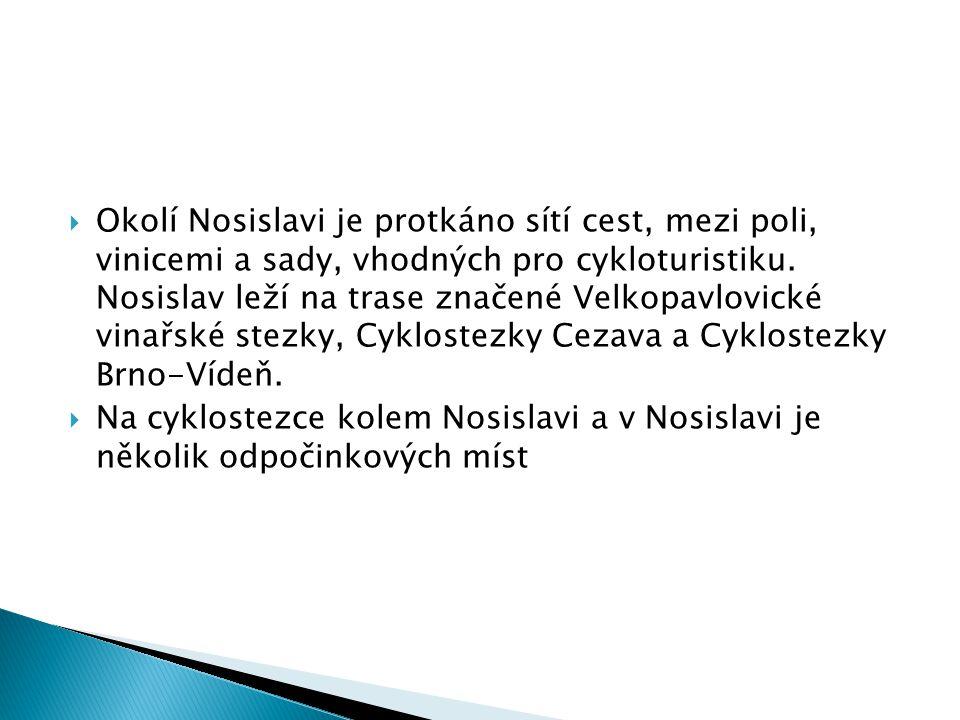 Okolí Nosislavi je protkáno sítí cest, mezi poli, vinicemi a sady, vhodných pro cykloturistiku. Nosislav leží na trase značené Velkopavlovické vinařské stezky, Cyklostezky Cezava a Cyklostezky Brno-Vídeň.