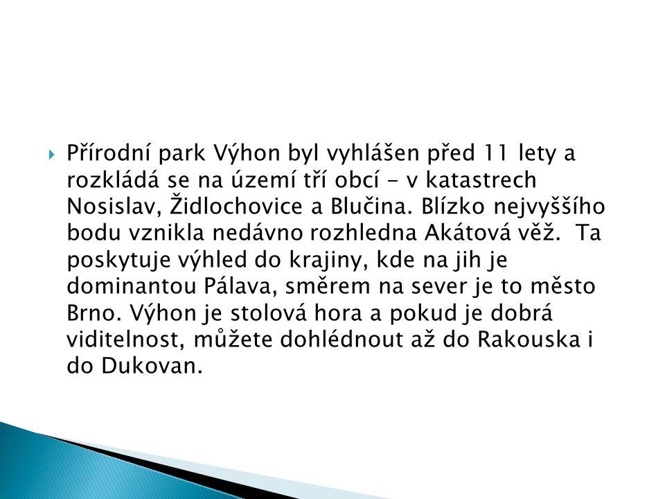 Přírodní park Výhon byl vyhlášen před 11 lety a rozkládá se na území tří obcí - v katastrech Nosislav, Židlochovice a Blučina.