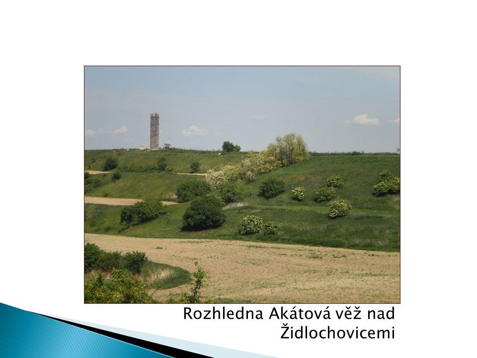 Rozhledna Akátová věž nad Židlochovicemi