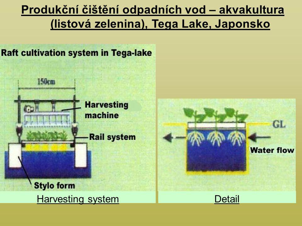 Produkční čištění odpadních vod – akvakultura (listová zelenina), Tega Lake, Japonsko