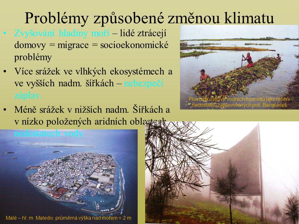 Problémy způsobené změnou klimatu