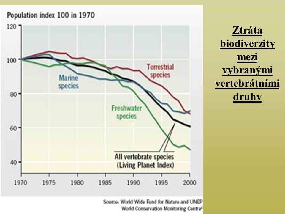Ztráta biodiverzity mezi vybranými vertebrátními druhy