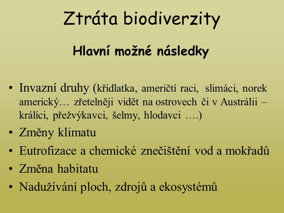 Ztráta biodiverzity Hlavní možné následky