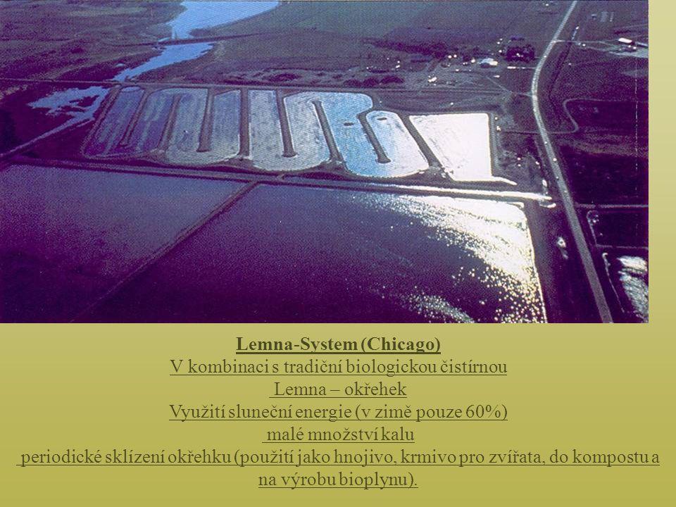 Lemna-System (Chicago) V kombinaci s tradiční biologickou čistírnou