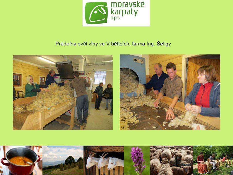 Prádelna ovčí vlny ve Vrběticích, farma Ing. Šeligy
