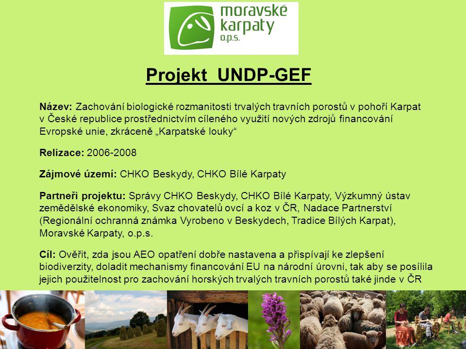 Projekt UNDP-GEF