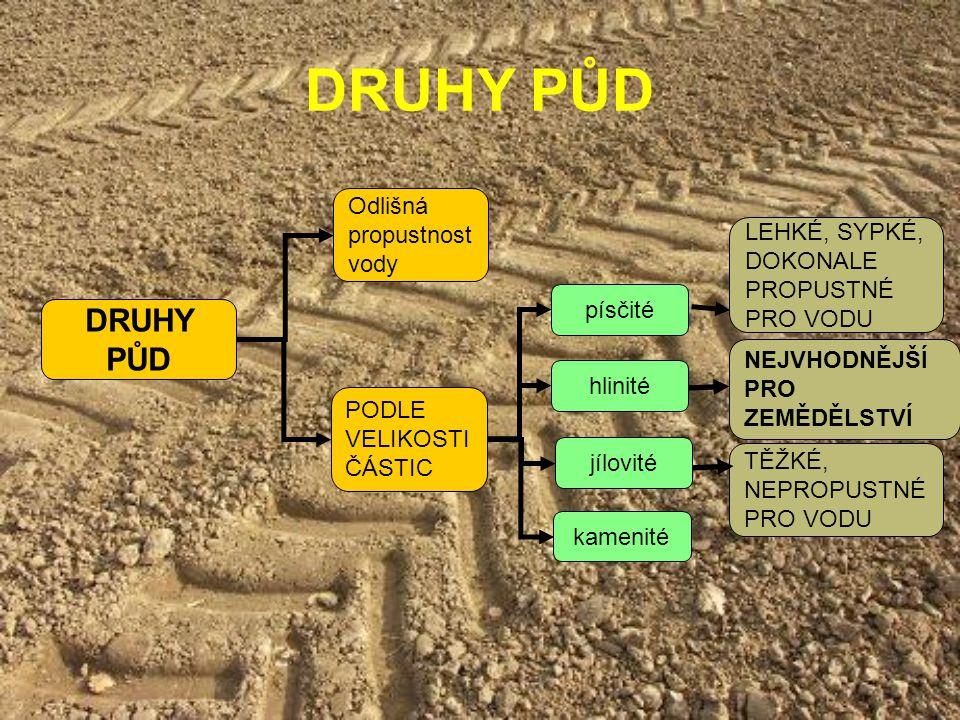 DRUHY PŮD DRUHY PŮD Odlišná propustnost vody