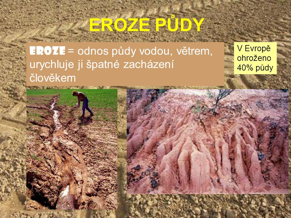 EROZE PŮDY eroze = odnos půdy vodou, větrem, urychluje ji špatné zacházení člověkem.