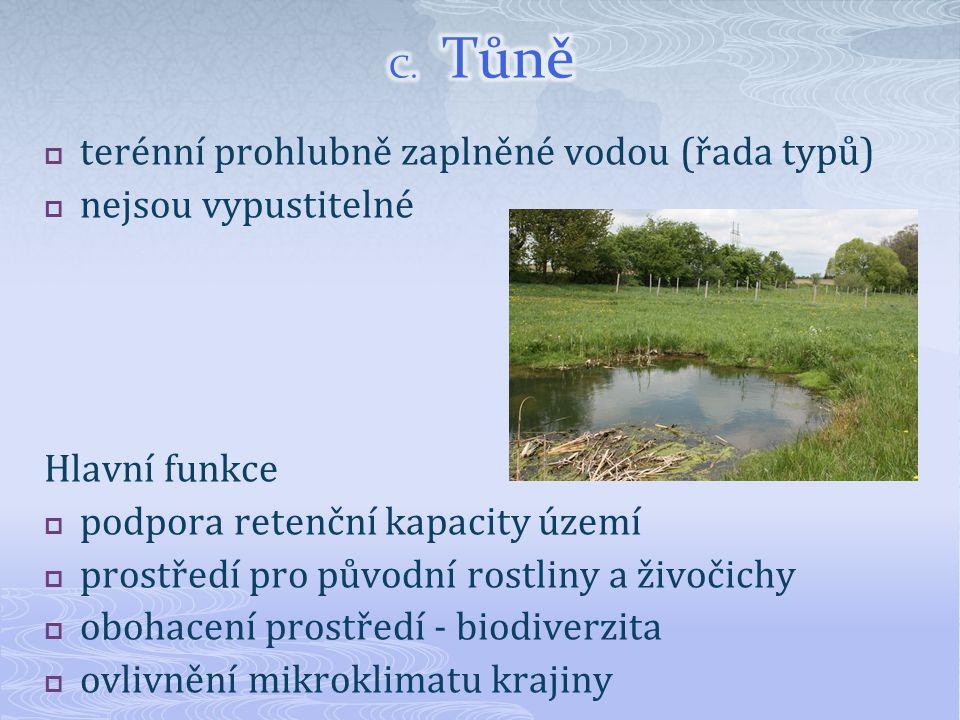 terénní prohlubně zaplněné vodou (řada typů) nejsou vypustitelné