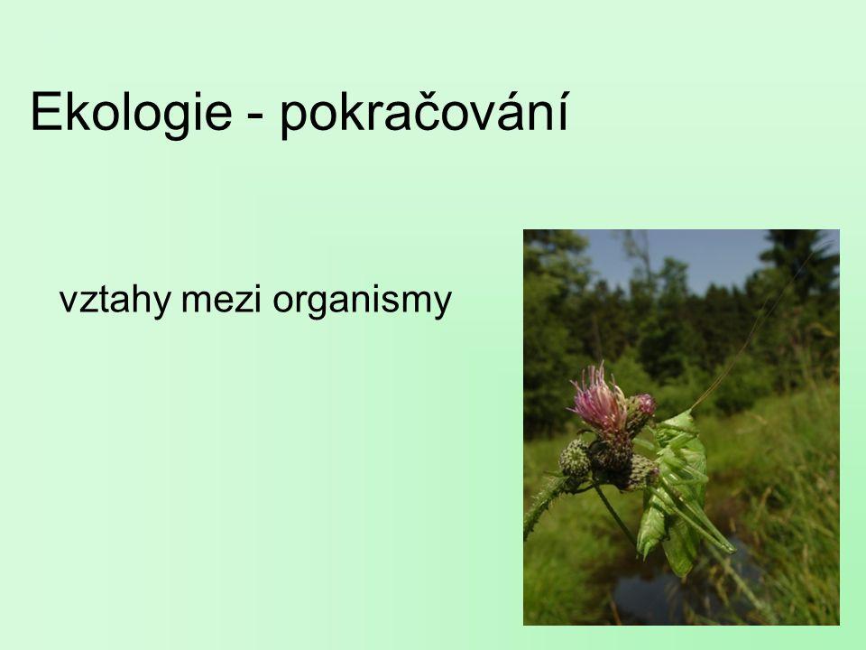Ekologie - pokračování