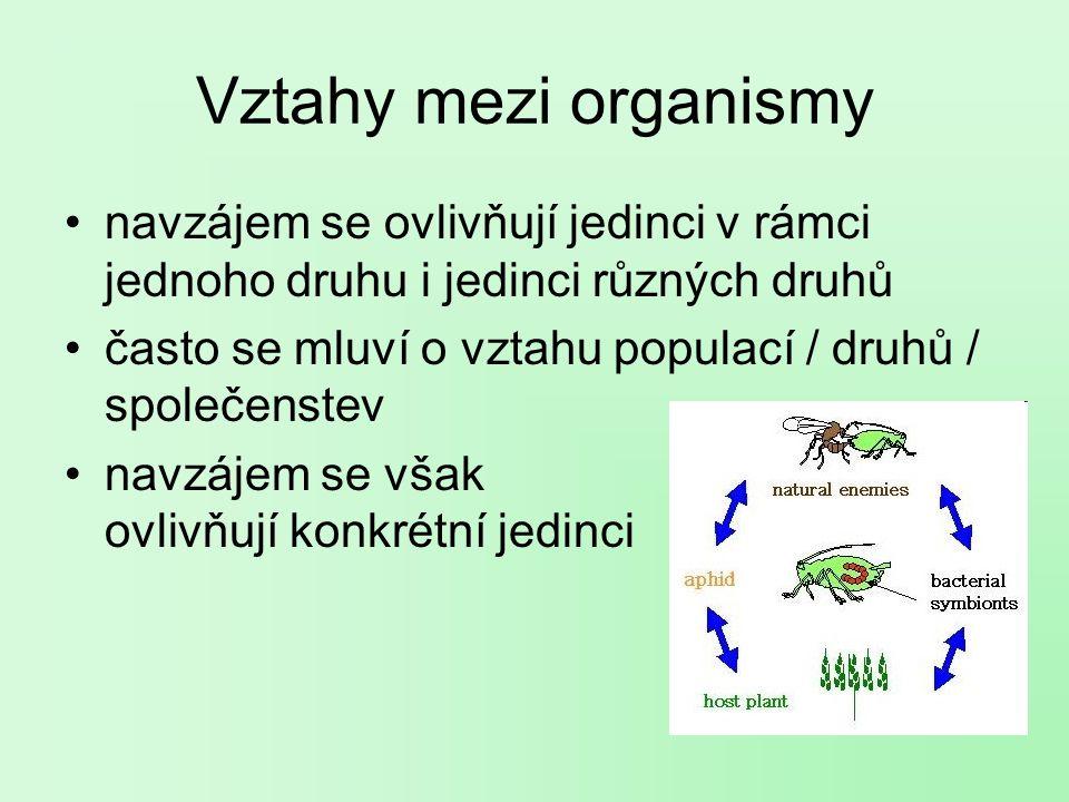 Vztahy mezi organismy navzájem se ovlivňují jedinci v rámci jednoho druhu i jedinci různých druhů.
