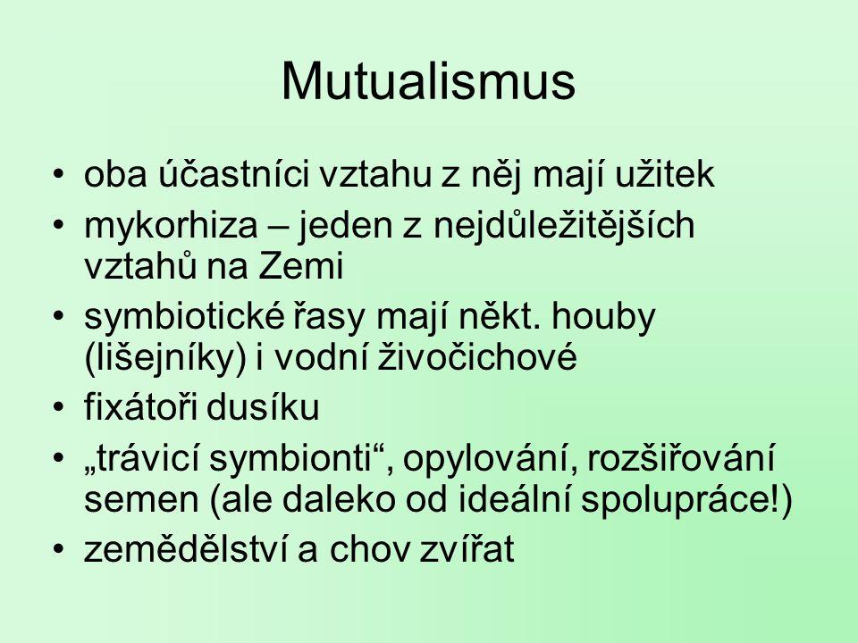 Mutualismus oba účastníci vztahu z něj mají užitek