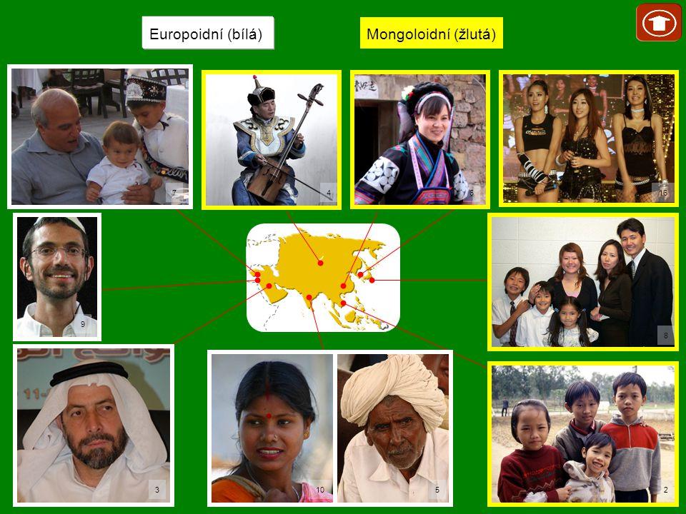 Europoidní (bílá) Mongoloidní (žlutá) 7 10 16 5 2 8 6 4 9 3
