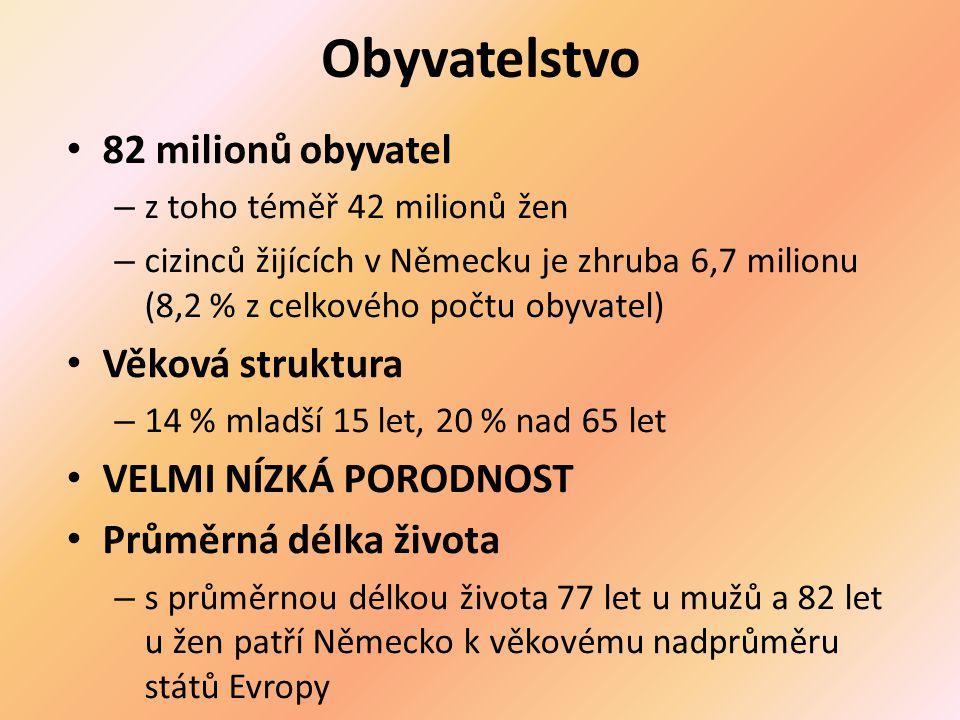 Obyvatelstvo 82 milionů obyvatel Věková struktura