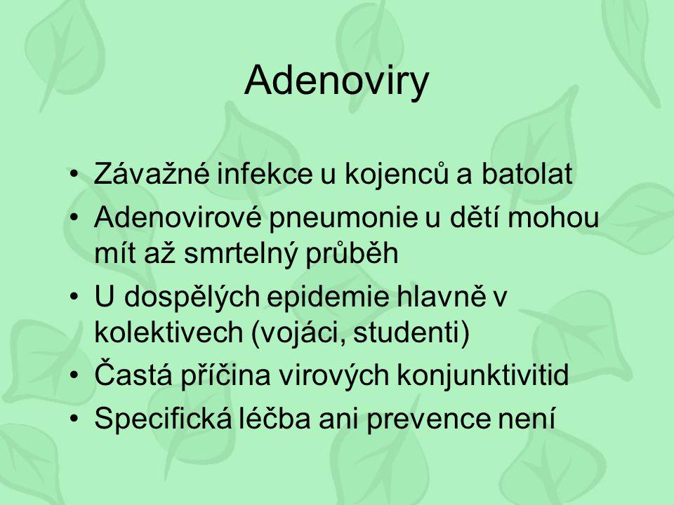 Adenoviry Závažné infekce u kojenců a batolat