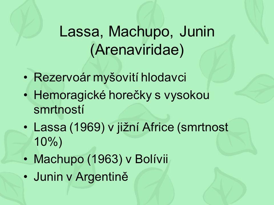 Lassa, Machupo, Junin (Arenaviridae)