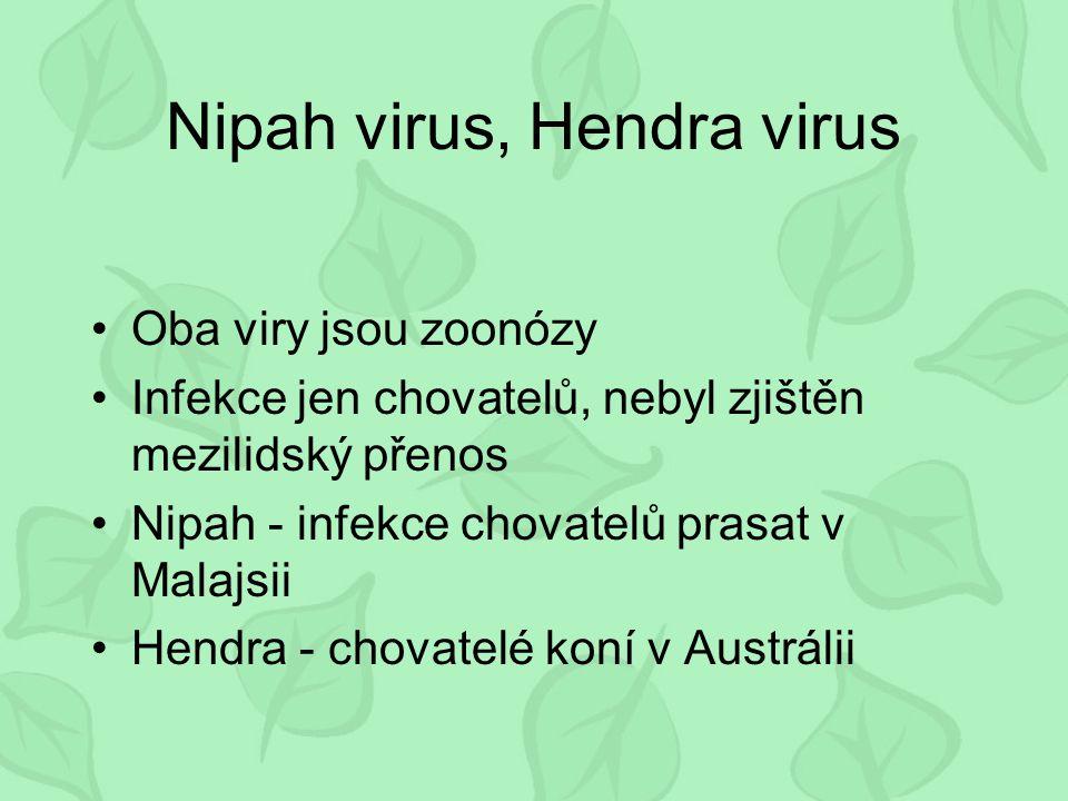 Nipah virus, Hendra virus