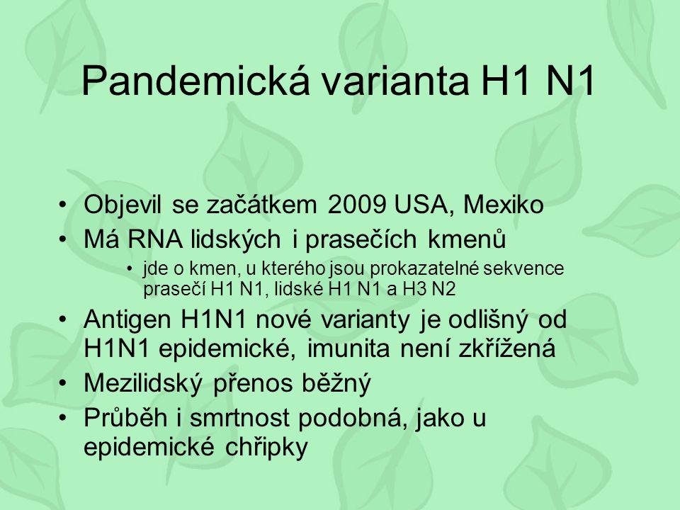 Pandemická varianta H1 N1