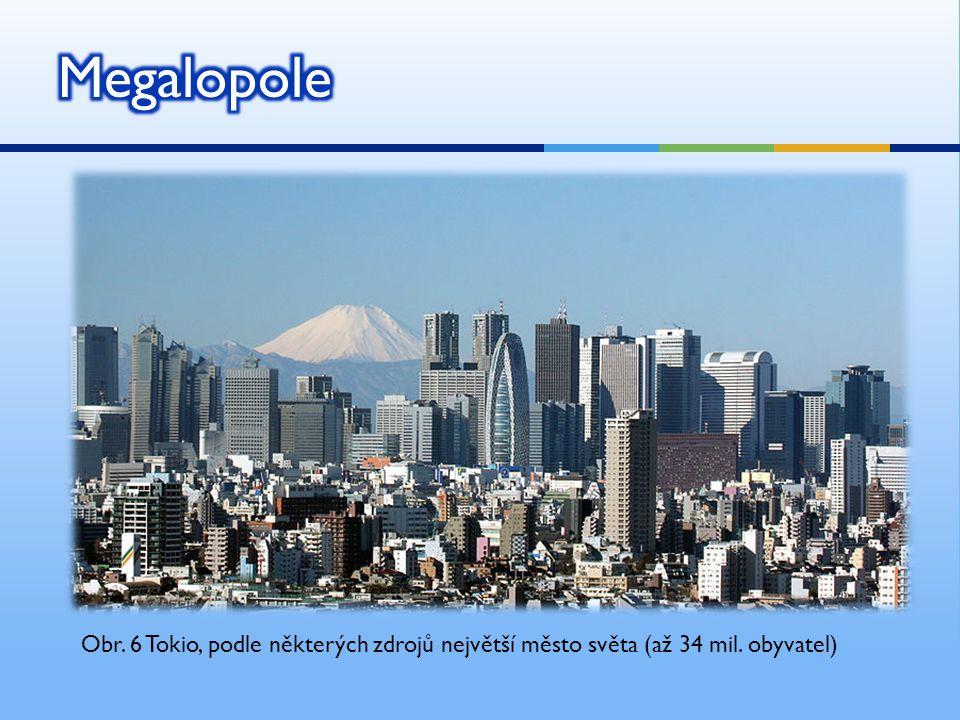 Megalopole Obr. 6 Tokio, podle některých zdrojů největší město světa (až 34 mil. obyvatel)