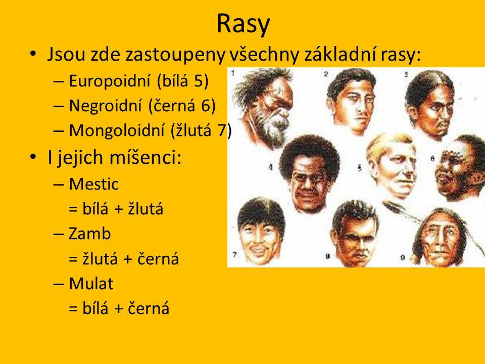 Rasy Jsou zde zastoupeny všechny základní rasy: I jejich míšenci: