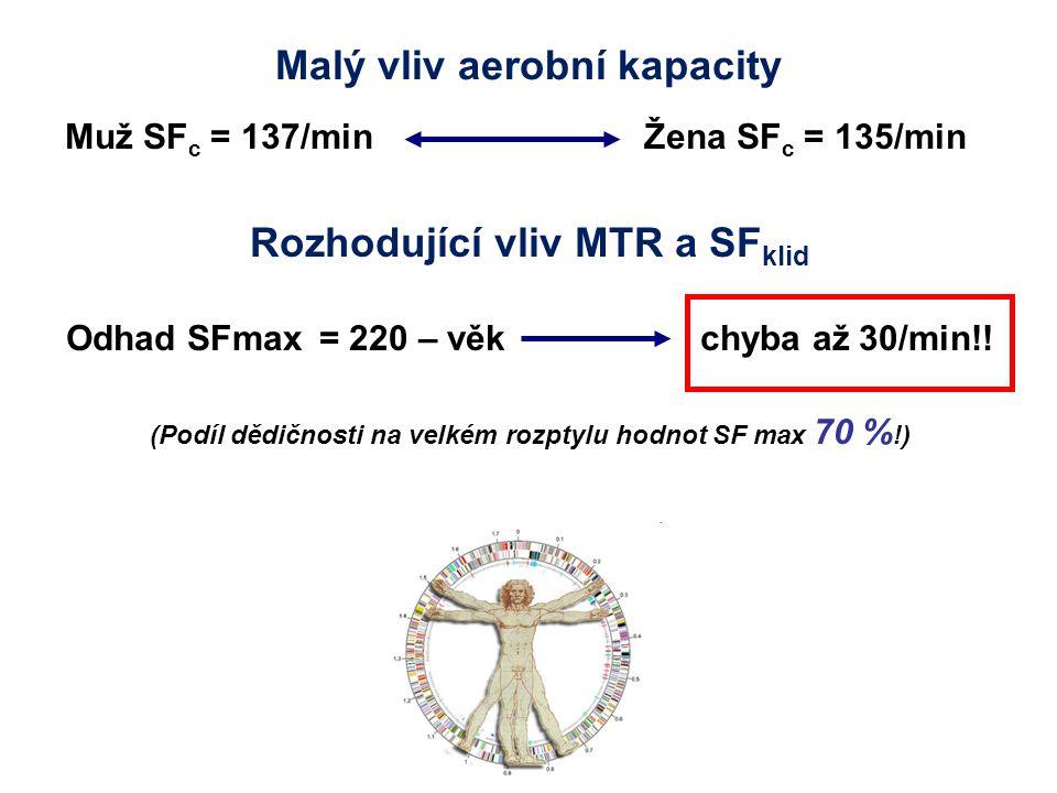 Malý vliv aerobní kapacity