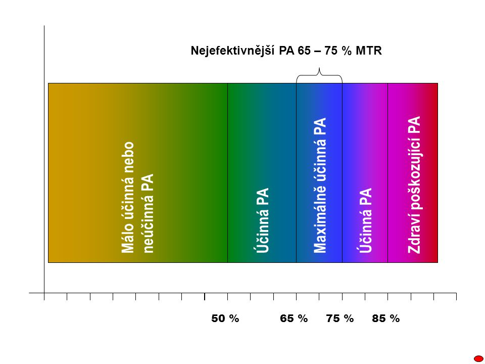 Nejefektivnější PA 65 – 75 % MTR