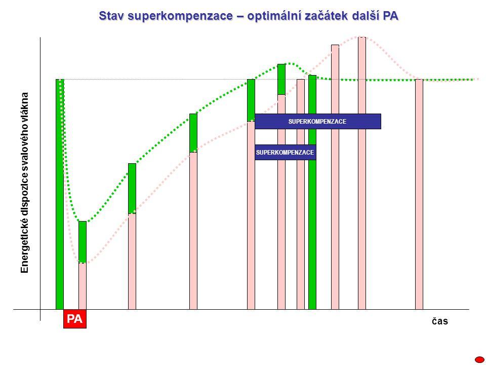 Stav superkompenzace – optimální začátek další PA