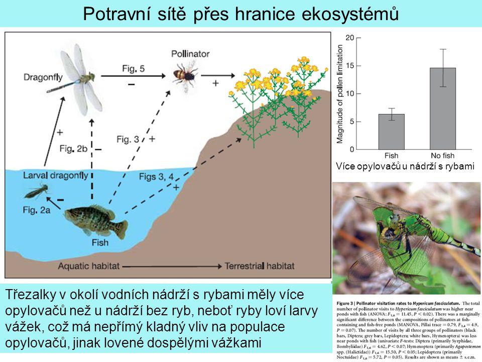 Potravní sítě přes hranice ekosystémů