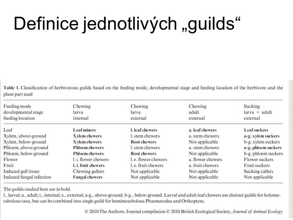 """Definice jednotlivých """"guilds"""