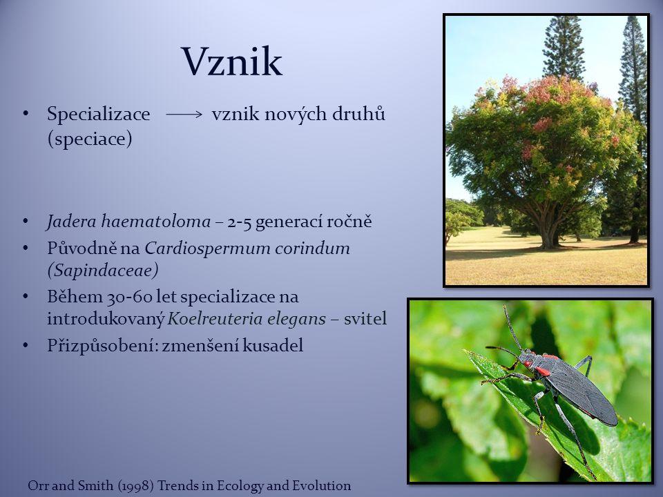 Vznik Specializace vznik nových druhů (speciace)