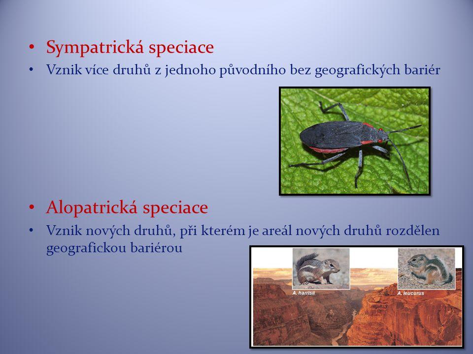 Sympatrická speciace Alopatrická speciace