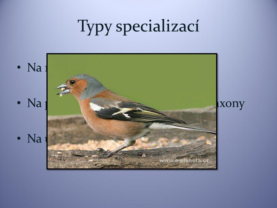 Typy specializací Na 1 druh Na příbuzné druhy nebo příbuzné taxony