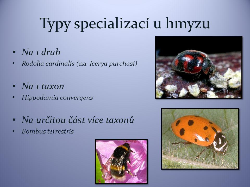 Typy specializací u hmyzu