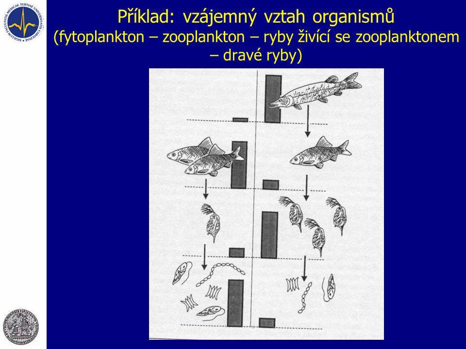 Příklad: vzájemný vztah organismů (fytoplankton – zooplankton – ryby živící se zooplanktonem – dravé ryby)