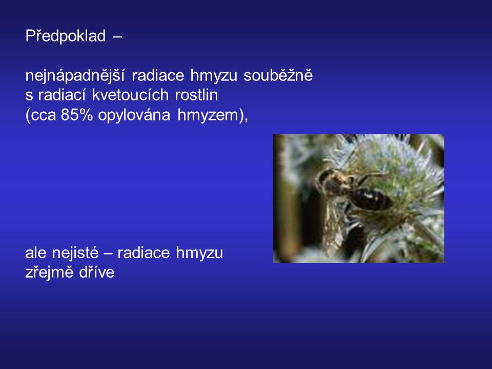 Předpoklad – nejnápadnější radiace hmyzu souběžně. s radiací kvetoucích rostlin. (cca 85% opylována hmyzem),
